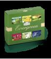 چای سبز کیسه ای احمد انگلستان در 6 طعم مختلف